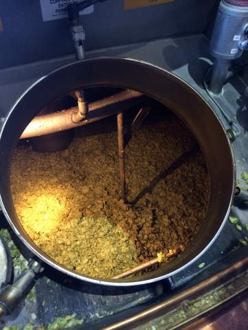 Whole cone Cascade hops added to the 200 barrel brew kettle.