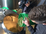 We all got to ceremoniously add hops to our brew.